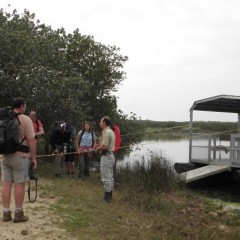 St Lucia Hippo Crocodile and Bush Guided Boat Safari