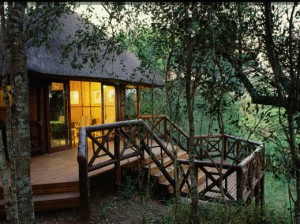 munyawaneni bush lodge accommodation