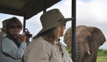 Hluhluwe Elephants Close Up while on Safari