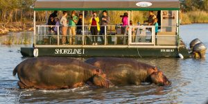 7 night safari tour south africa
