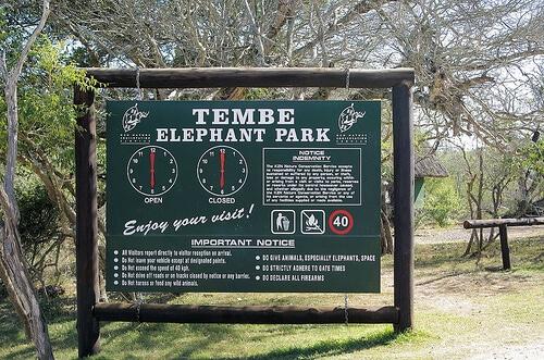 tembe elephant park gate times
