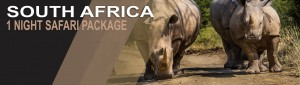 1 Night Safari Package South Africa