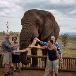 Hluhluwe Game Reserve Safari Tips and information