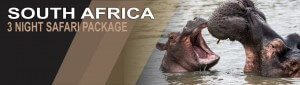 3 Night Safari Package South Africa