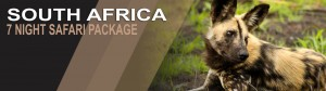 7 night south africa safari package