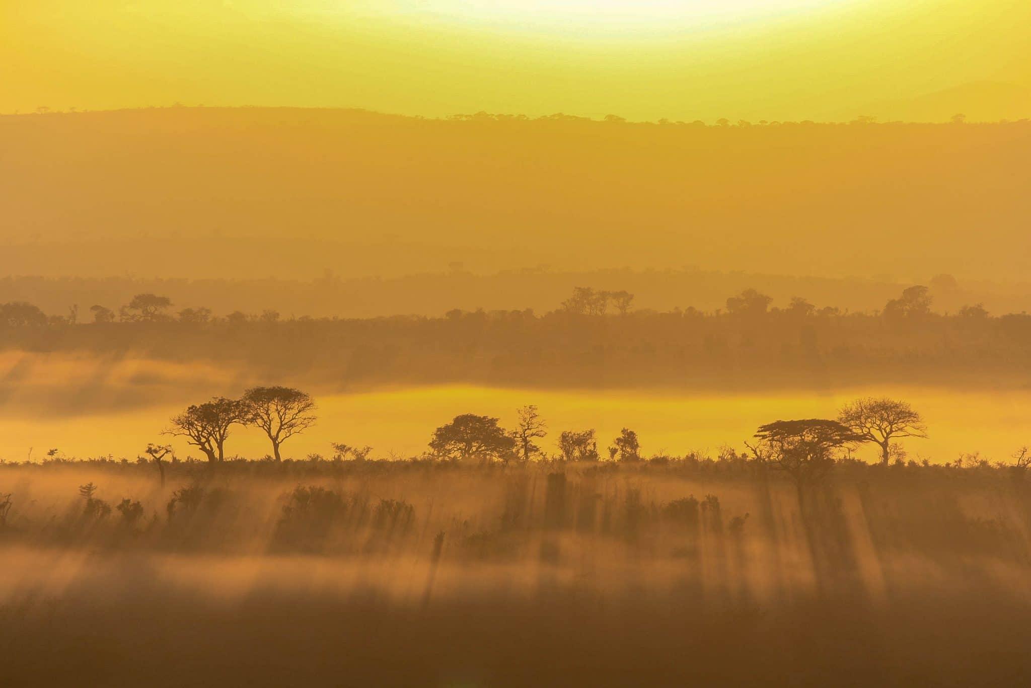 hluhluwe-imfolozi park sunrise