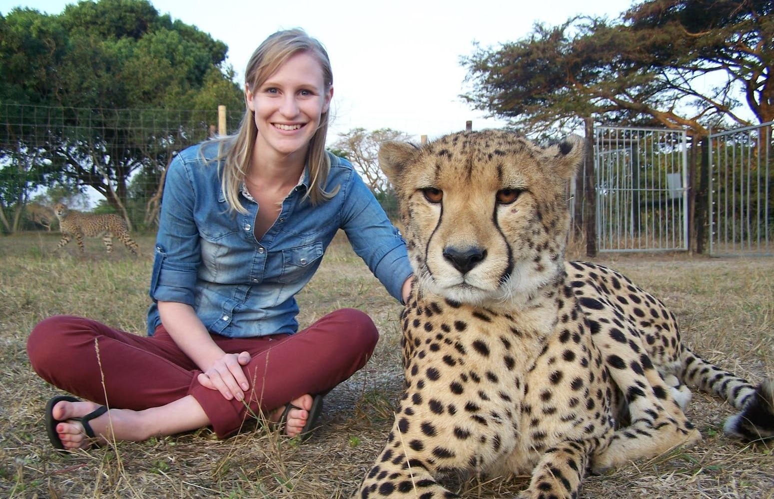 Cheetah Facts & Info