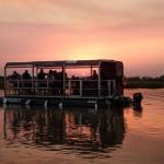 boat safari tours