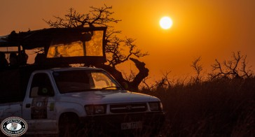 Safari Parks near Durban, South Africa