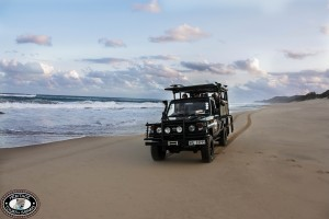 South African Safari Packages, Holidays and Tours