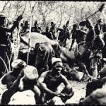 hluhluwe ivory hunting