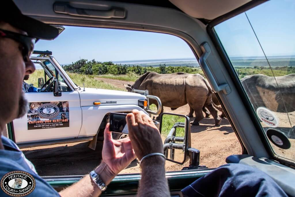 Safari Trips from Durban