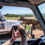 hluhluwe Safari Packages and Tours