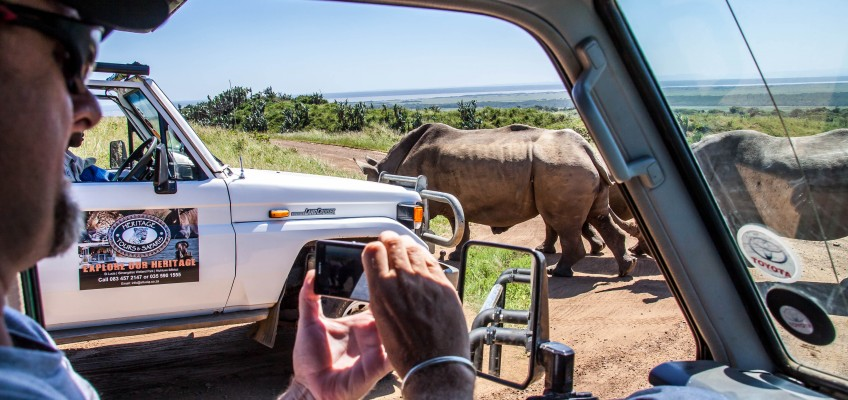 Cape Town Safari Packages