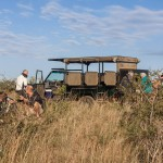 world heritage half day safari tour south africa