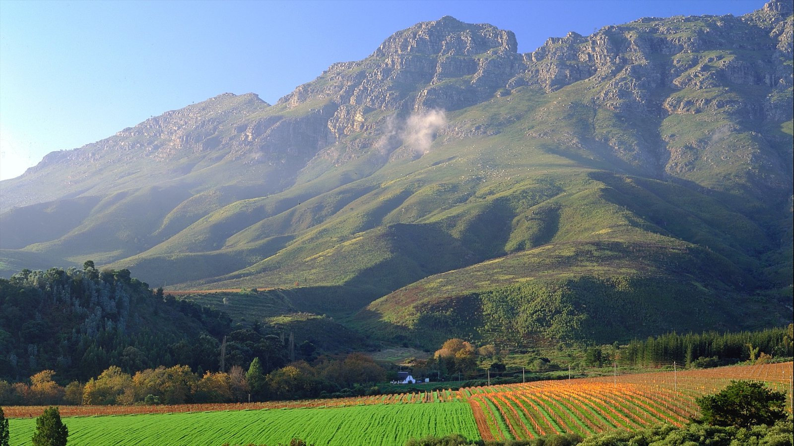 stellenbosch wine tasting and what to expect