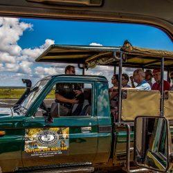 Full Day Safari South Africa