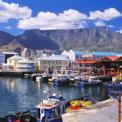 Cape Town Safaris and Accommodation