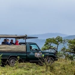 durban safari packages south africa