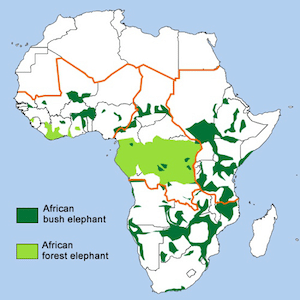 african elephant distribution in africa map