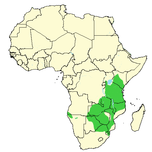 impala animal distribution map in africa
