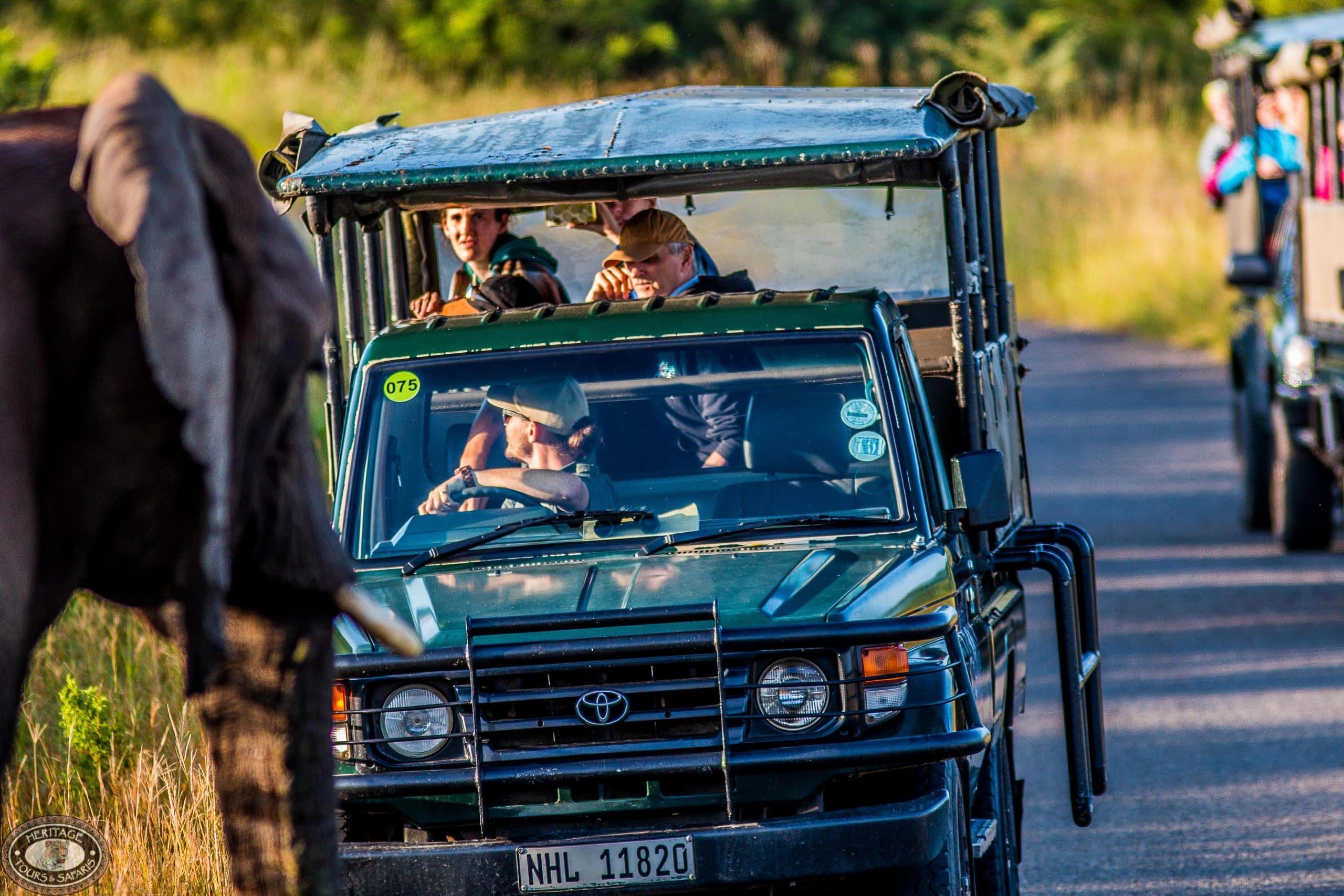 Half Day Big 5 Safari Hluhluwe-Imfolozi Park