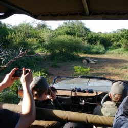manyoni safari with clients