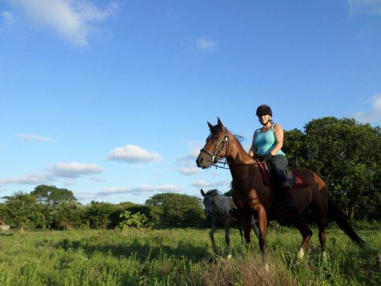 hluhluwe horse safaris