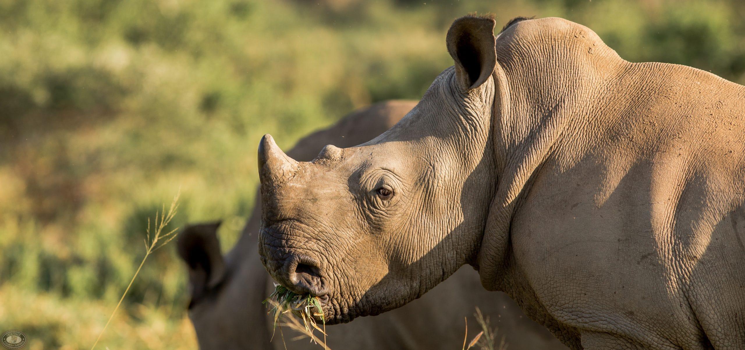 kwazulu natal top tourist attractions