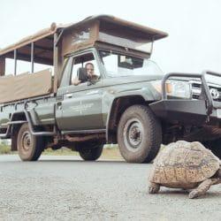 mkuze game reserve safari vehicle