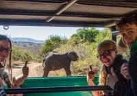 Hluhluwe Game Reserve Safari Prices and Gate Times